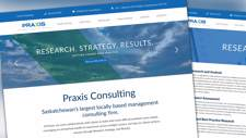 Praxis Consulting Website